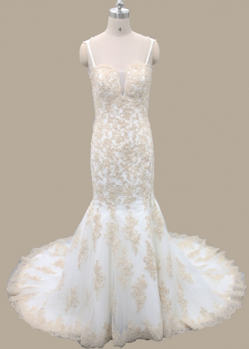 Golden Applique Lace Ivory Tulle Bridal Gown