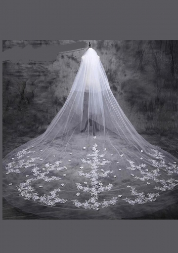 Cathedral Length Veil style 15