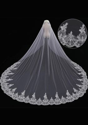 Cathedral Length Veil style 11