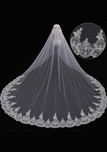 2017 Cathedral Length Veil style 11