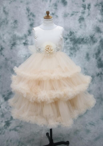 Champagne color flower girl dress new design 2017