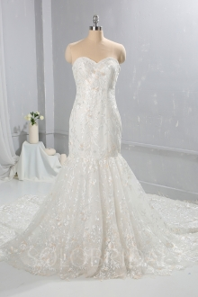 New design Ivory with Champagne Lace Wedding Dress Cathedral Train 724A9328