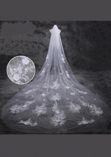 Cathedral Length Veil style 21