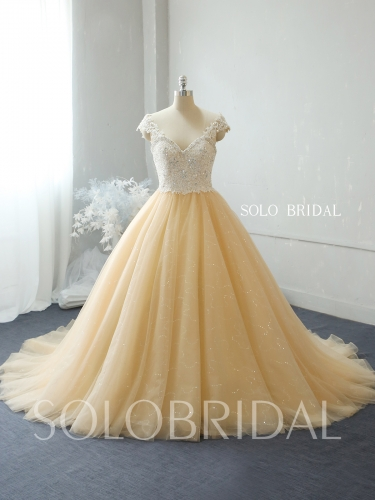 Champagne shiny ball gown wedding dress 724A2194